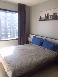 รูปภาพ 1 bed Condo in Life Asoke Huai Khwang District C07633