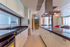 Picture of 3 bed Penthouse in Wind Sukhumvit 23 Khlongtoeinuea Sub District P04323