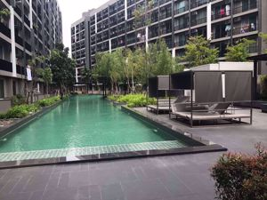 Picture of 1 bed Condo in A Space Me Sukhumvit 77 Suanluang Sub District C09025