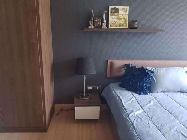 Picture of 1 bed Condo in Tree Condo Sukhumvit 42 Phrakhanong Sub District C12022