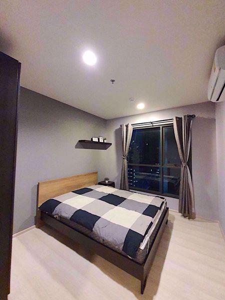 Picture of 1 bed Condo in Life Sukhumvit 48 Phrakhanong Sub District C012078
