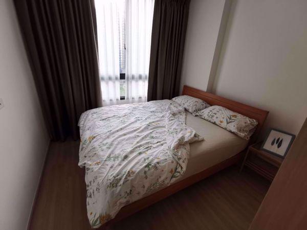 Picture of 1 bed Condo in Artemis Sukhumvit 77 Suanluang Sub District C012188