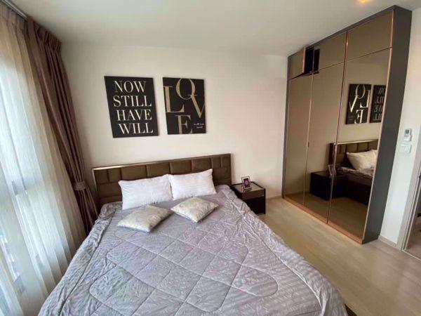 Picture of 2 bed Condo in Life Sukhumvit 48 Phrakhanong Sub District C012645