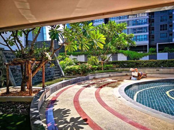 Picture of Studio bed Condo in The Trendy Condominium Khlong Tan Nuea Sub District C012651