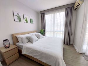 Picture of 1 bed Condo in @ City Sukhumvit 101/1 Bangchak Sub District C014845